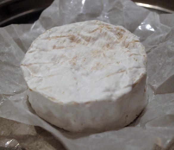 Camembert du Champ Secret sattundfroh